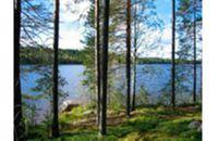 Vesannon kunta Vesanto