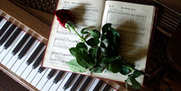 Pianokartano Oy Salo