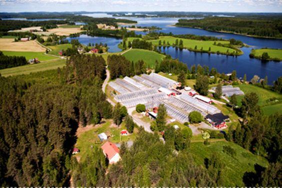 Heimosen Puutarha Oy Kuopio