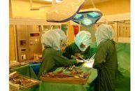 Tekonivelsairaala Coxa
