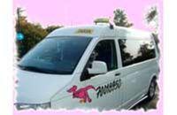 Invataksit Helsinki Taxia & Handicab