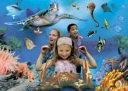 Sea Life Helsinki Oy