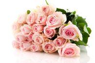 Vilppulan Kukka ja Hautauspalvelu