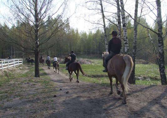 Ratsastuskoulu Poni-Haka