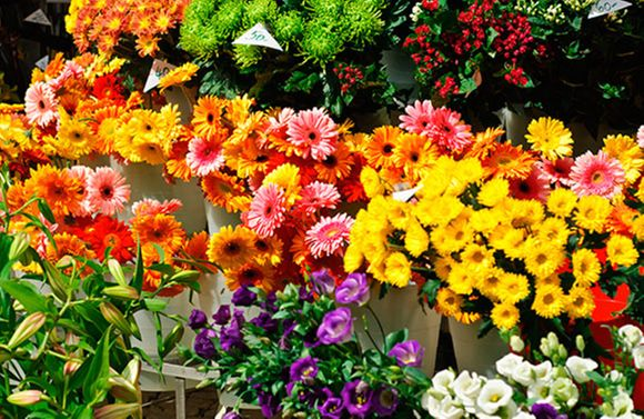 Kukkakauppa Rauma