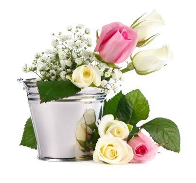 Kukkakauppa Form & Flora Oy