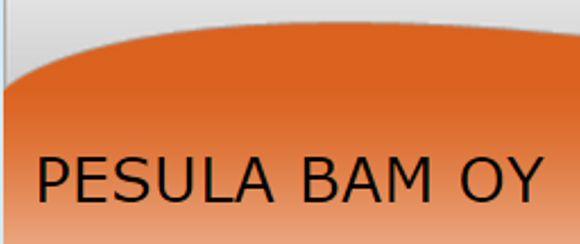 Pesula BAM Oy, Turku