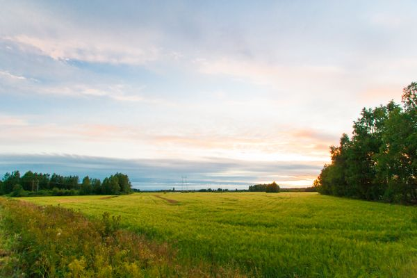 Suur-Savon Sähkö Oy, Savonlinna