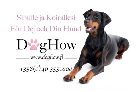 Koirakoulu DogHow, Vantaa