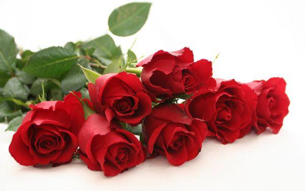 Korsnäs Blomster- och Begravningstjänst, Korsnäs