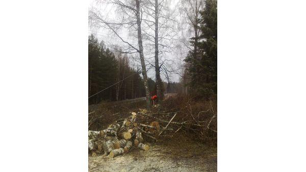 Karjalan Metsäpalvelu Oy, Ruokolahti