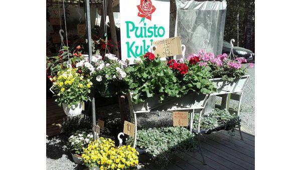 Kukkakauppa Mikkeli