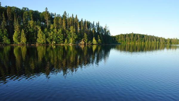 Itä-Suomen Metsätoimistot Oy, Outokumpu