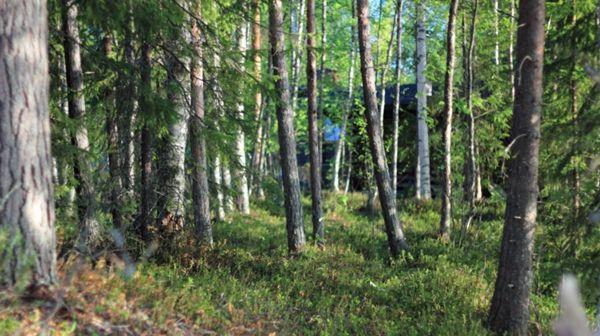 Aapishovi, Rovaniemi