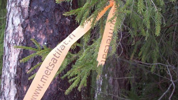 Etelä-Suomen metsätilat LKV, Hollola