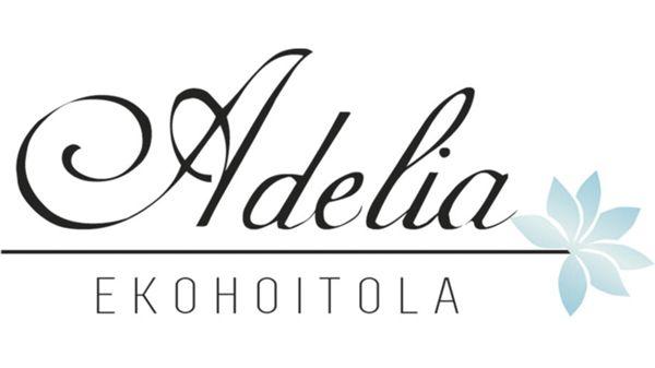 Ekohoitola Adelia, Kemi