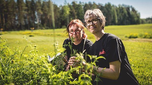 Pohjoisen Keski-Suomen ammattiopisto, Saarijärvi, Saarijärvi