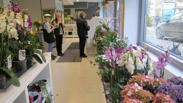 Kukkakauppa Mia-Maria Oy, Oulu