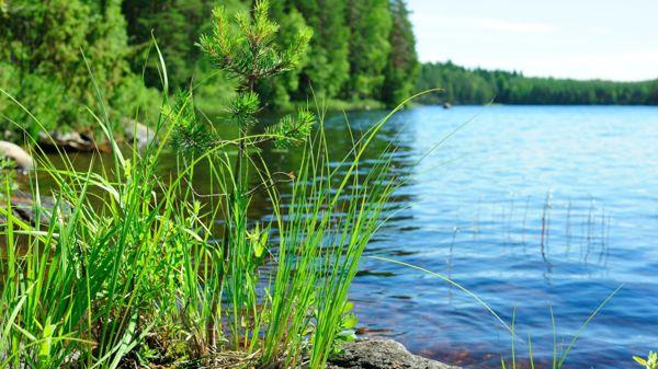 Lahden terveydenhuollon kuntoutusosasto, Lahti
