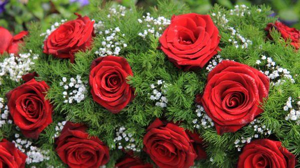 Kukkakauppa Amanda, Imatra