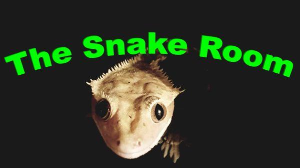 The Snake Room, Sastamala