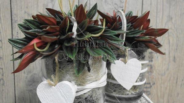 Huhtalan Kukkakauppa, Akaa