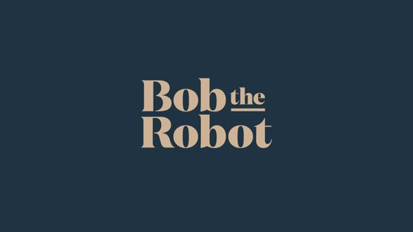 Bob the Robot, Helsinki