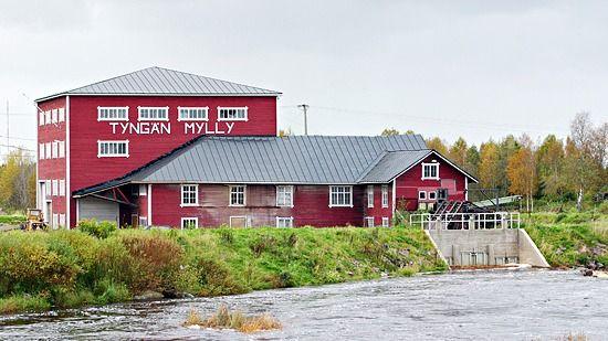 Tyngän Myllyosuuskunta, Kalajoki