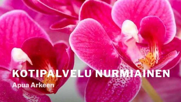 Kotipalvelu Taina Nurmiainen tmi, Luumäki