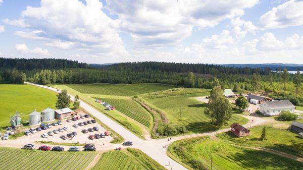 Uusi-Riihijärven tila, Jämsä