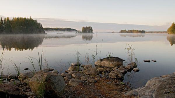JP-Kalamatkat, Kuopio