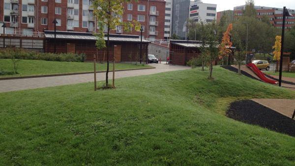 Tampereen Viherrakennus Oy, Tampere