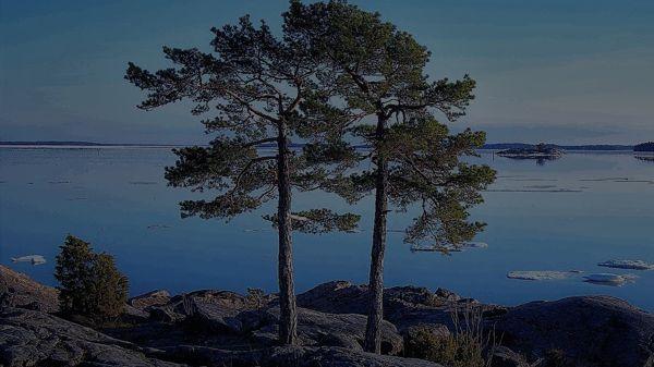 Vertaislaina Oy, Turku