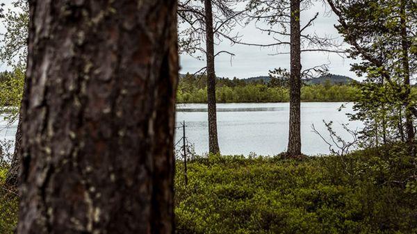 Kemijärven ecoASEMA, Kemijärvi