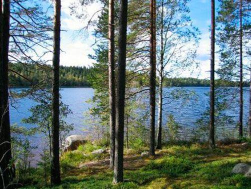 Vesannon kunta, Vesanto