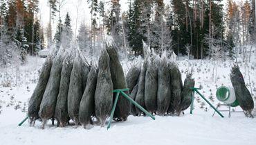 Pekan joulukuuset, Lohja