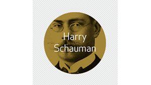 Harry Schaumans Stiftelse, Vaasa